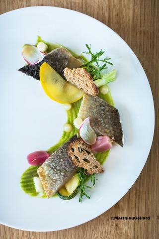 Plat restaurant - Loiseau des Sens  @MatthieuCellard
